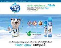 รับออกแบบเว็บไซต์polarspray